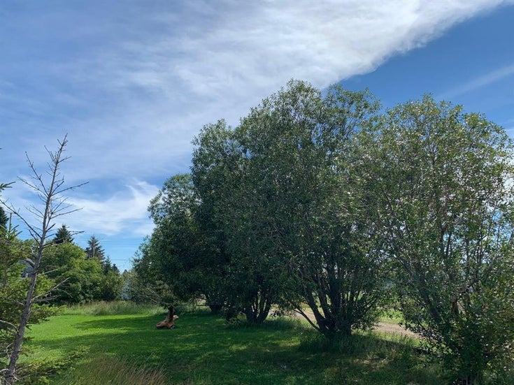 212 King Street - Other Land for sale(A1026187)