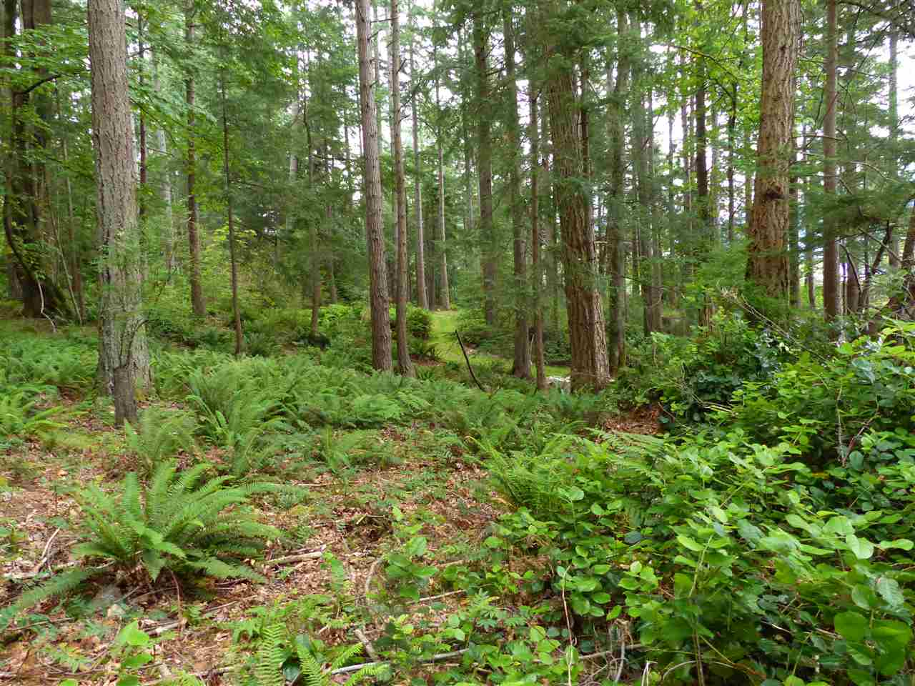 #16 GAMBIER ACRES - Gambier Island  for sale(R2302228) - #12