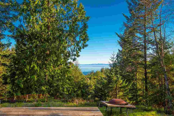 347 AERIE TREE LANE - Bowen Island  for sale(R2369332)