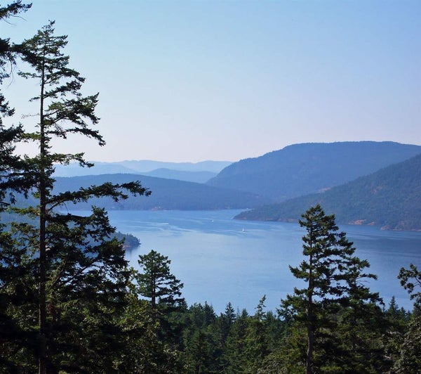 LOT 12 CANVASBACK PLACE - Salt Spring Island  for sale(R2377024)