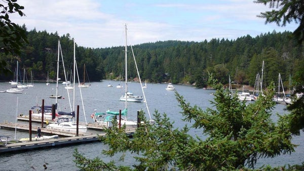 110 ONTARIO PLACE - Salt Spring Island House/Single Family for sale, 4 Bedrooms (R2399292)