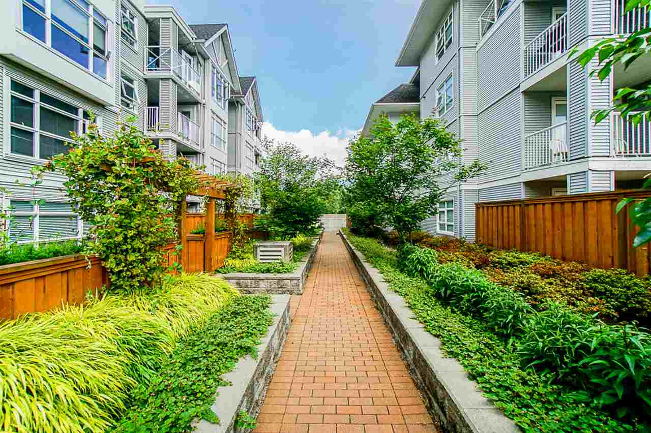 310 3142 ST JOHNS STREET - Port Moody Centre Apartment/Condo for sale, 2 Bedrooms (R2469785) - #30