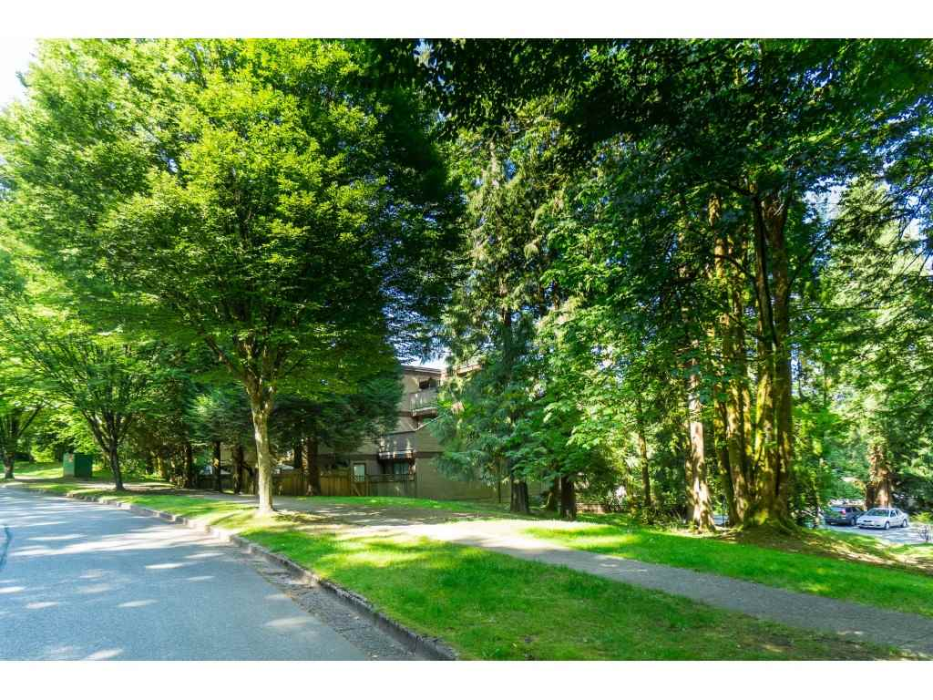 203 9154 SATURNA DRIVE - Simon Fraser Hills Apartment/Condo for sale, 2 Bedrooms (R2470068) - #25