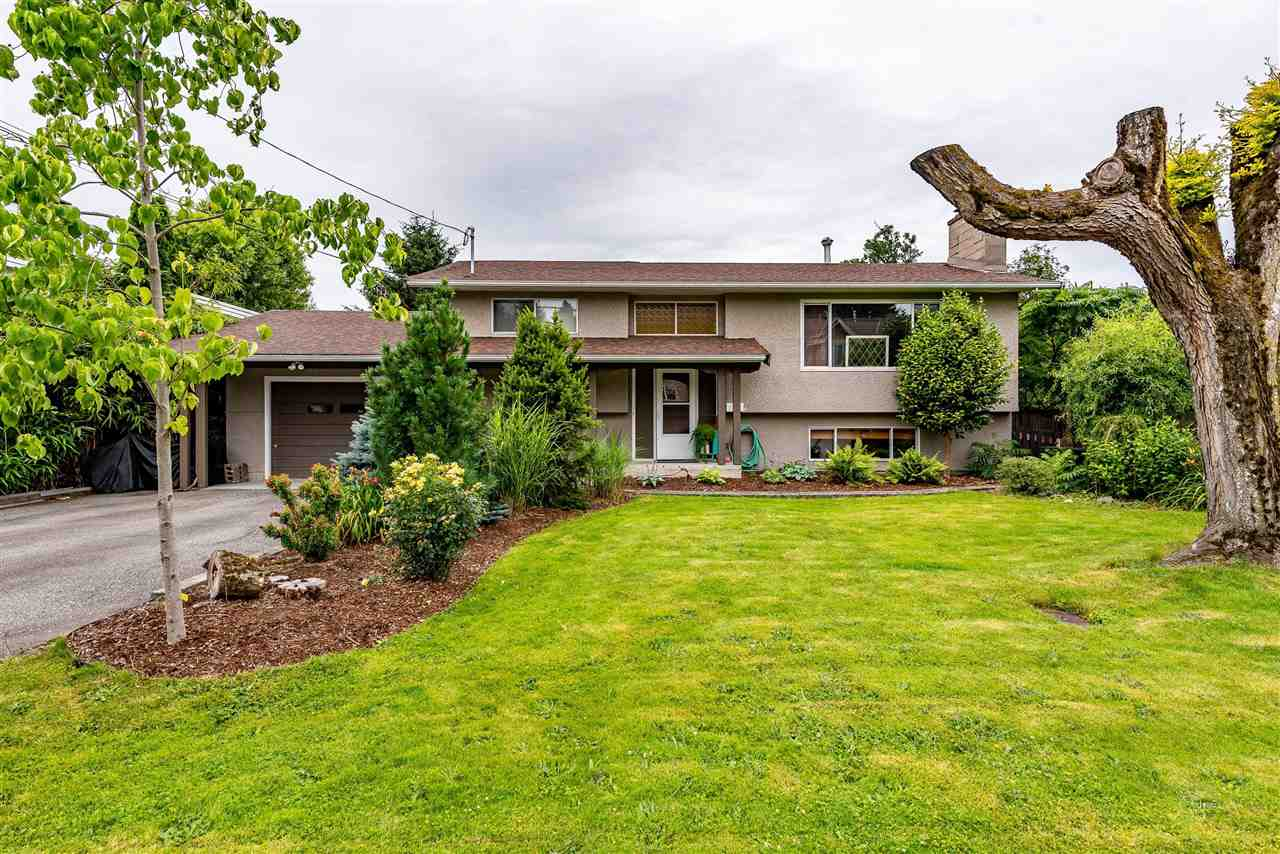 9161 HAZEL STREET - Chilliwack E Young-Yale House/Single Family for sale, 3 Bedrooms (R2473697) - #1