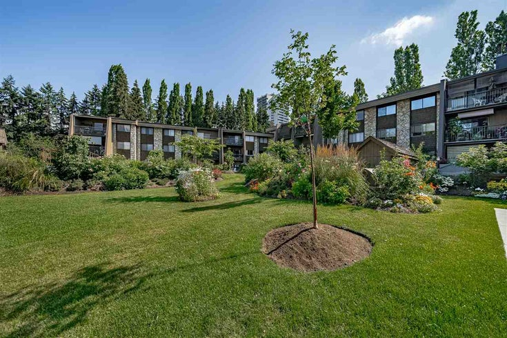 323 9101 HORNE STREET - Government Road Apartment/Condo for sale, 1 Bedroom (R2478594)