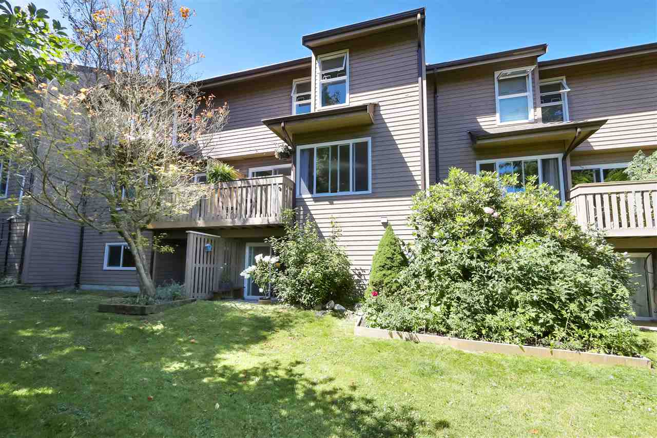 557 CARLSEN PLACE - North Shore Pt Moody Townhouse for sale, 4 Bedrooms (R2481494) - #26