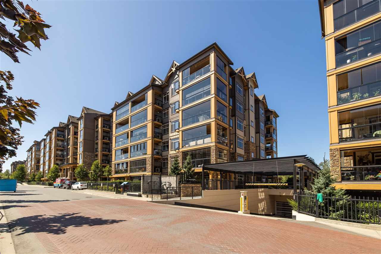 311 8157 207 STREET - Willoughby Heights Apartment/Condo for sale, 3 Bedrooms (R2483561) - #1