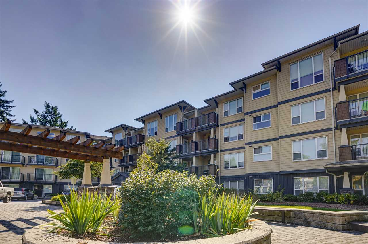116 2565 CAMPBELL AVENUE - Central Abbotsford Apartment/Condo for sale, 1 Bedroom (R2487241) - #1