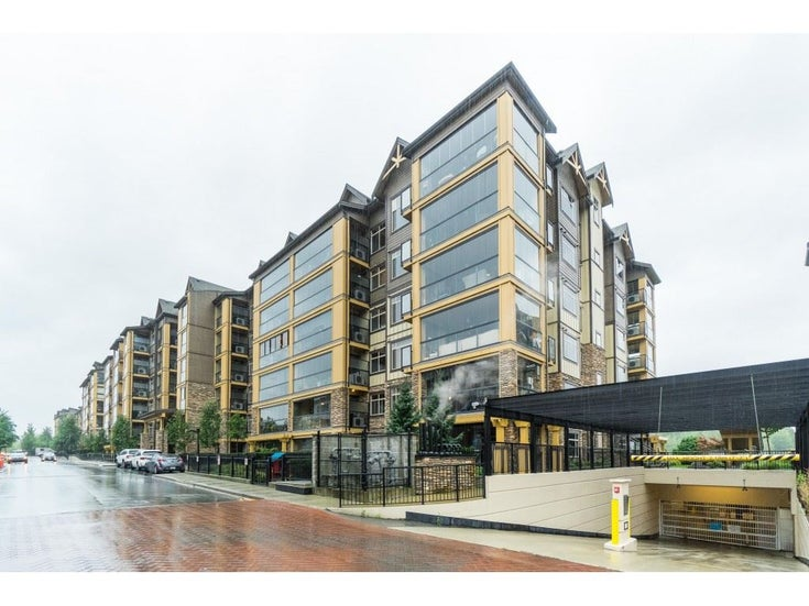 501 8157 207 STREET - Willoughby Heights Apartment/Condo for sale, 1 Bedroom (R2502189)