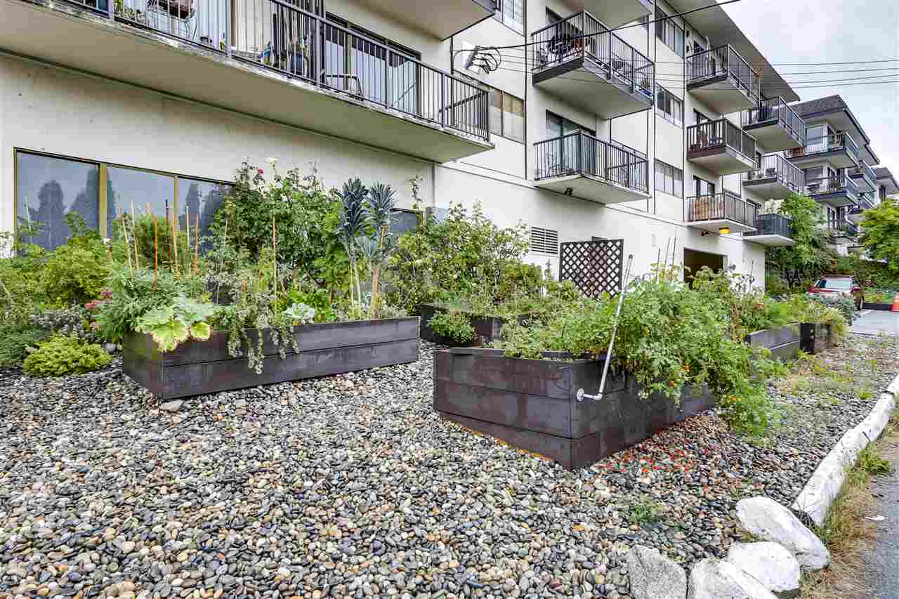 214 155 E 5TH STREET - Lower Lonsdale Apartment/Condo for sale, 1 Bedroom (R2502488) - #21