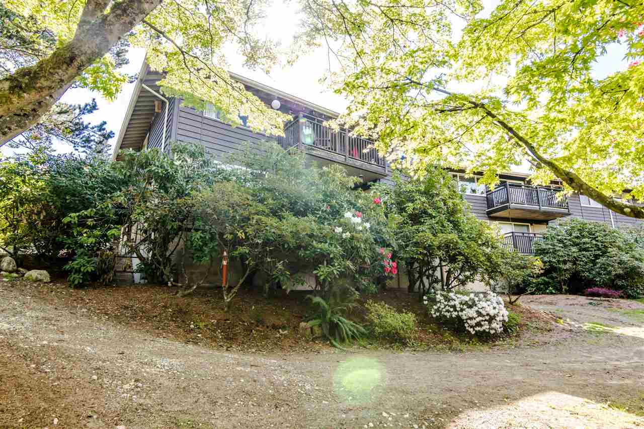 503 555 W 28TH STREET - Upper Lonsdale Apartment/Condo for sale, 2 Bedrooms (R2505885) - #16