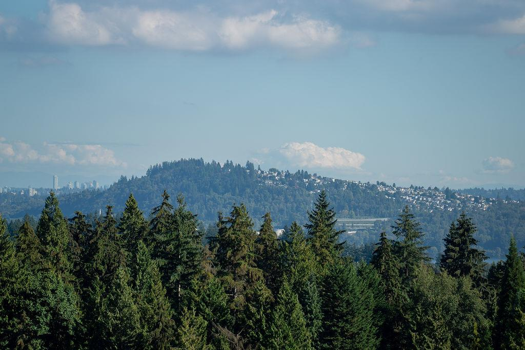 907 2785 LIBRARY LANE - Lynn Valley Apartment/Condo for sale, 2 Bedrooms (R2507993) - #2