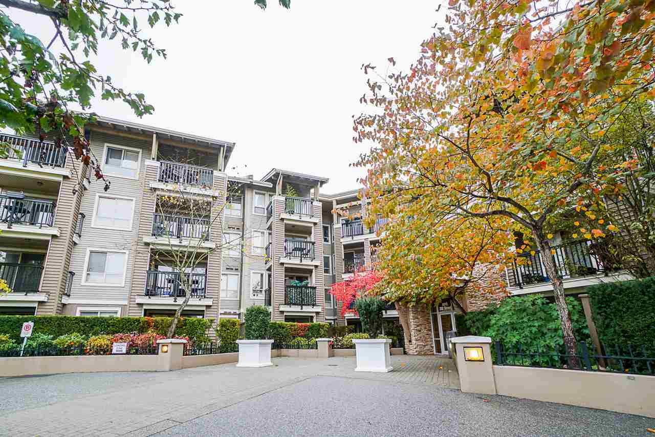 204 8915 202 STREET - Walnut Grove Apartment/Condo for sale, 1 Bedroom (R2509452) - #33