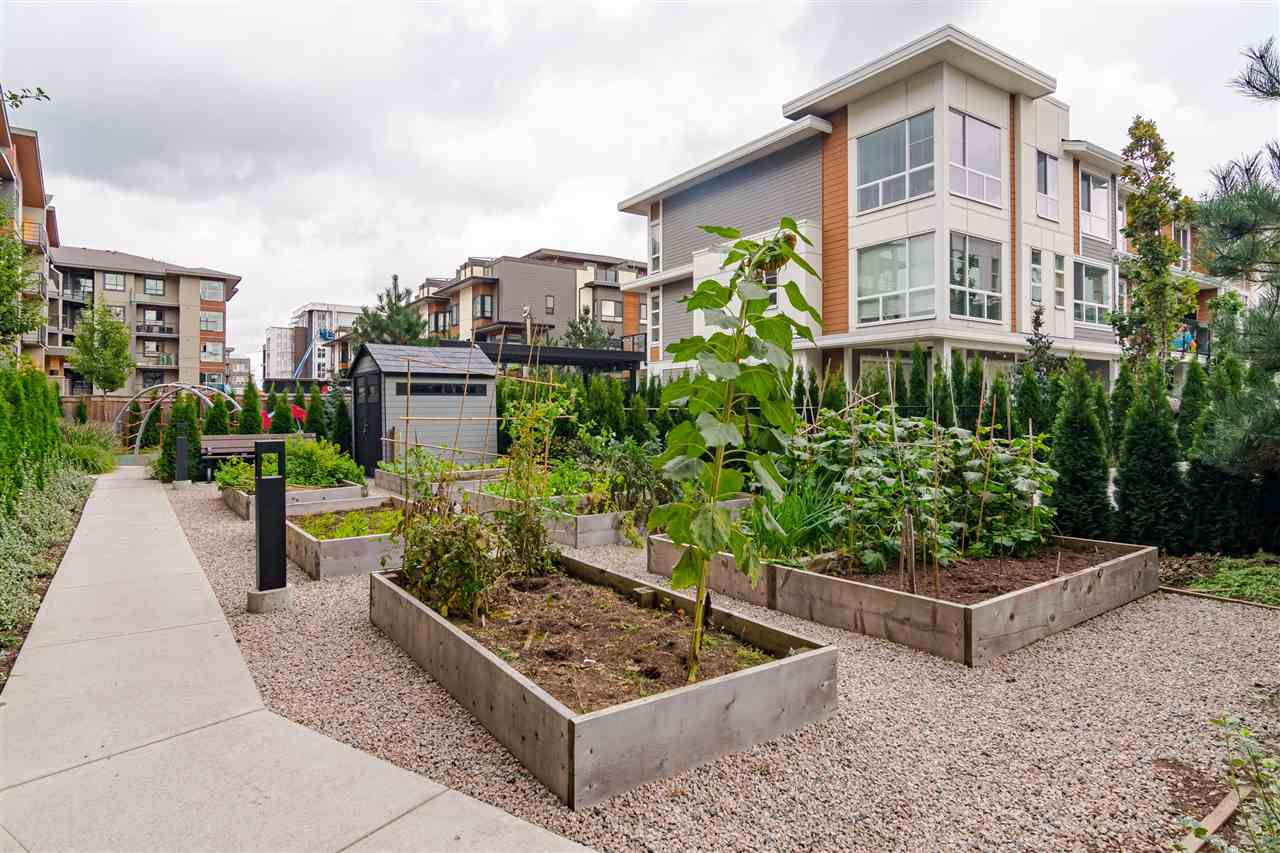 306 20829 77A AVENUE - Willoughby Heights Apartment/Condo for sale, 2 Bedrooms (R2509468) - #23