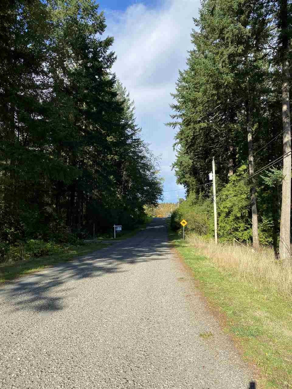 SL.1 161 208 STREET - Campbell Valley  for sale(R2511642) - #4
