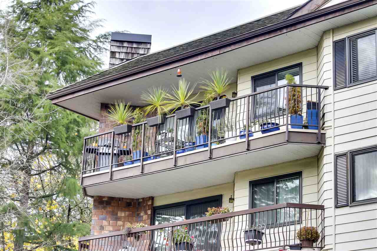 303 10160 RYAN ROAD - South Arm Apartment/Condo for sale, 2 Bedrooms (R2519204) - #1