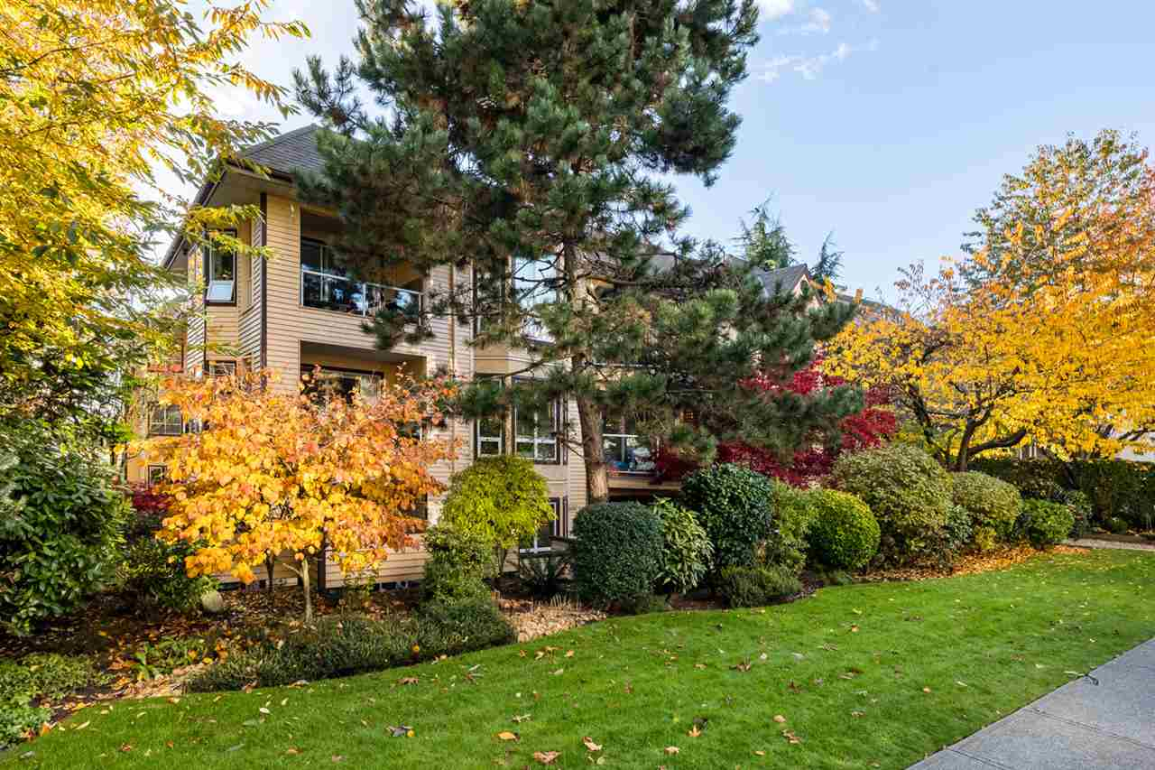 102 123 E 6TH STREET - Lower Lonsdale Apartment/Condo for sale, 1 Bedroom (R2526655) - #18