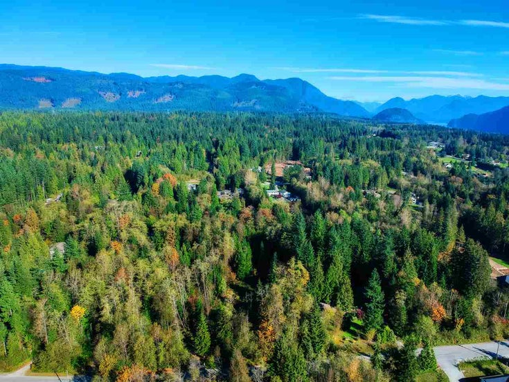 30255 BRACKLEY AVENUE - Stave Falls for sale(R2527114)