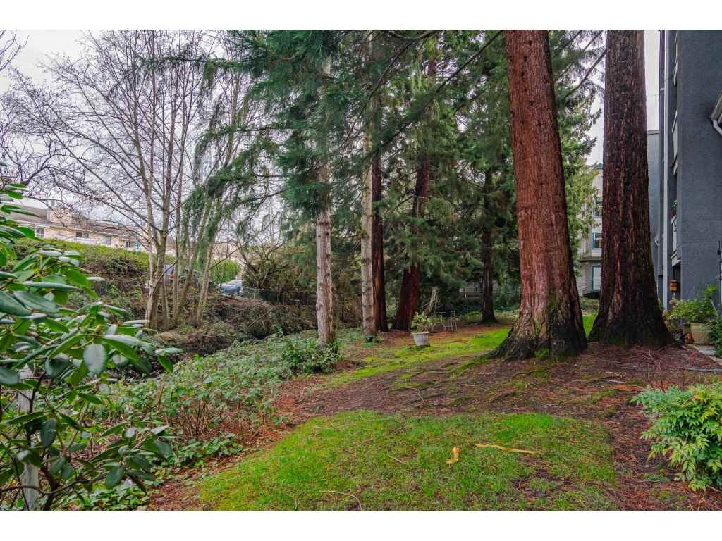 306 5664 200 STREET - Langley City Apartment/Condo for sale, 2 Bedrooms (R2527382) - #28
