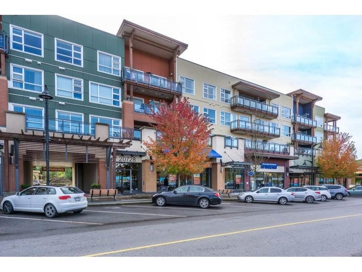 315 20728 WILLOUGHBY TOWN CENTRE DRIVE - Willoughby Heights Apartment/Condo for sale, 1 Bedroom (R2528146)