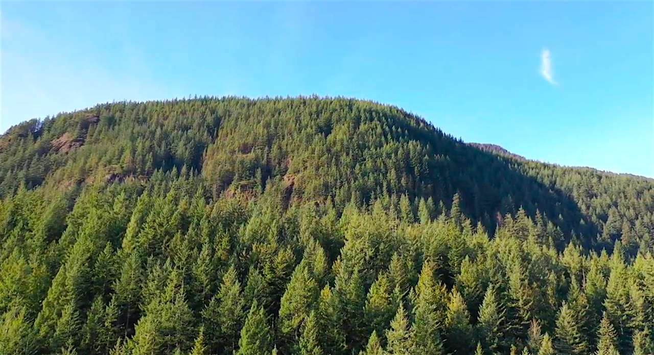 LOT A DL 871 BEST POINT - Indian River for sale(R2529388) - #13