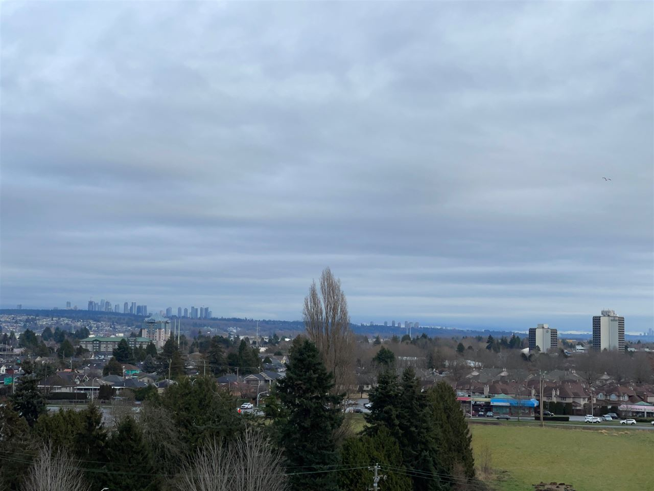 1008 3333 BROWN ROAD - West Cambie Apartment/Condo for sale, 2 Bedrooms (R2529587)