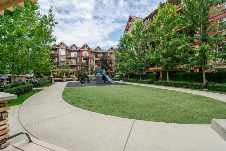 321 8288 207A STREET - Willoughby Heights Apartment/Condo for sale, 1 Bedroom (R2529591)