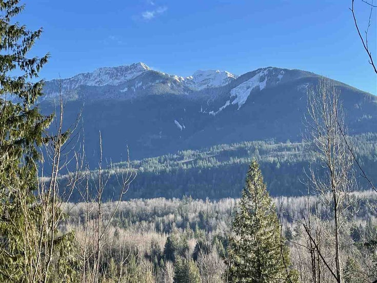 4149 SLESSE ROAD - Chilliwack River Valley for sale(R2529886)