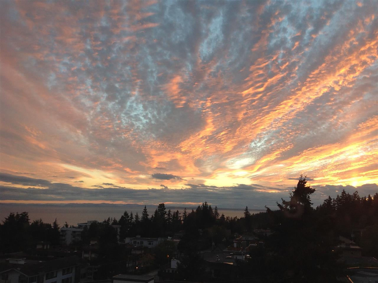 611 1442 FOSTER STREET - White Rock Apartment/Condo for sale, 2 Bedrooms (R2533524) - #1