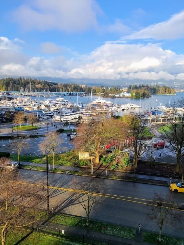 603 555 JERVIS STREET - Coal Harbour Apartment/Condo for sale, 1 Bedroom (R2536707)