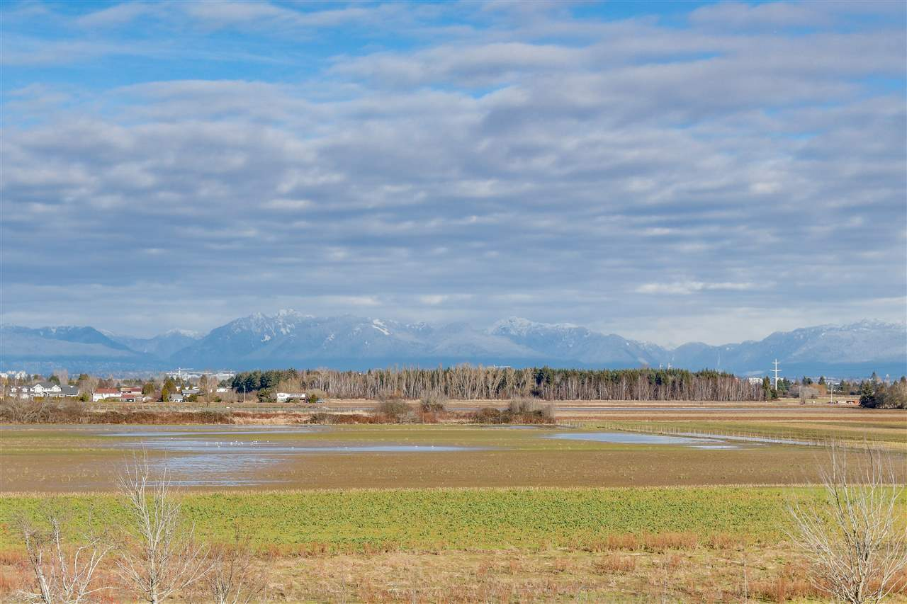 3 6300 LONDON ROAD - Steveston South Townhouse for sale, 2 Bedrooms (R2542085) - #2