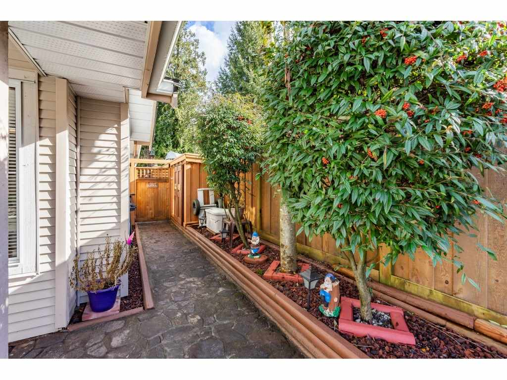 29 12188 HARRIS ROAD - Central Meadows Townhouse for sale, 3 Bedrooms (R2542124) - #5