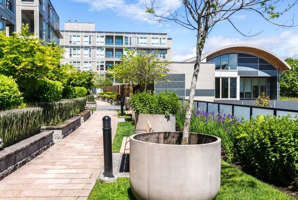 765 4099 STOLBERG STREET - West Cambie Apartment/Condo for sale, 1 Bedroom (R2560593)