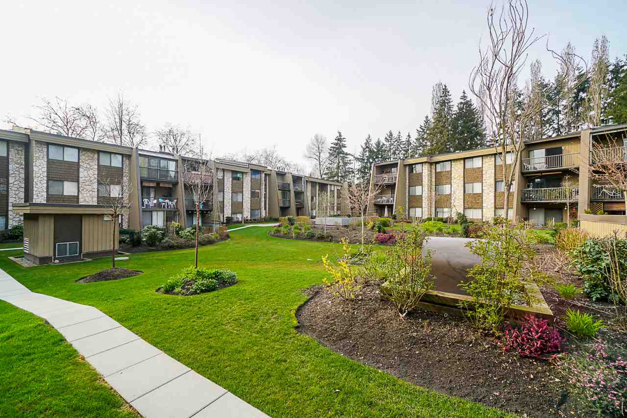 209 9101 HORNE STREET - Government Road Apartment/Condo for sale, 1 Bedroom (R2561259) - #4