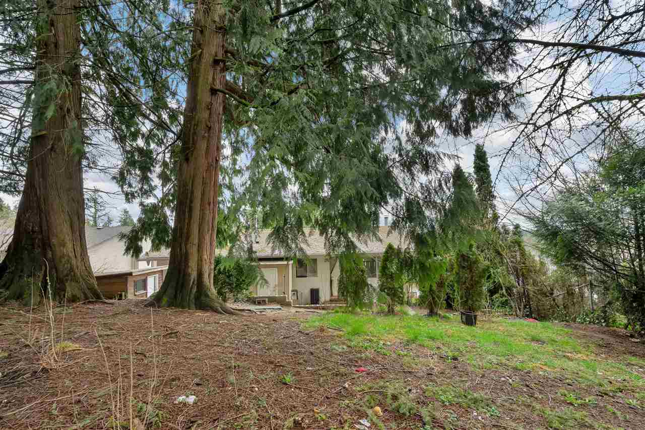 8053 CARIBOU STREET - Mission BC House/Single Family for sale, 5 Bedrooms (R2561306) - #24