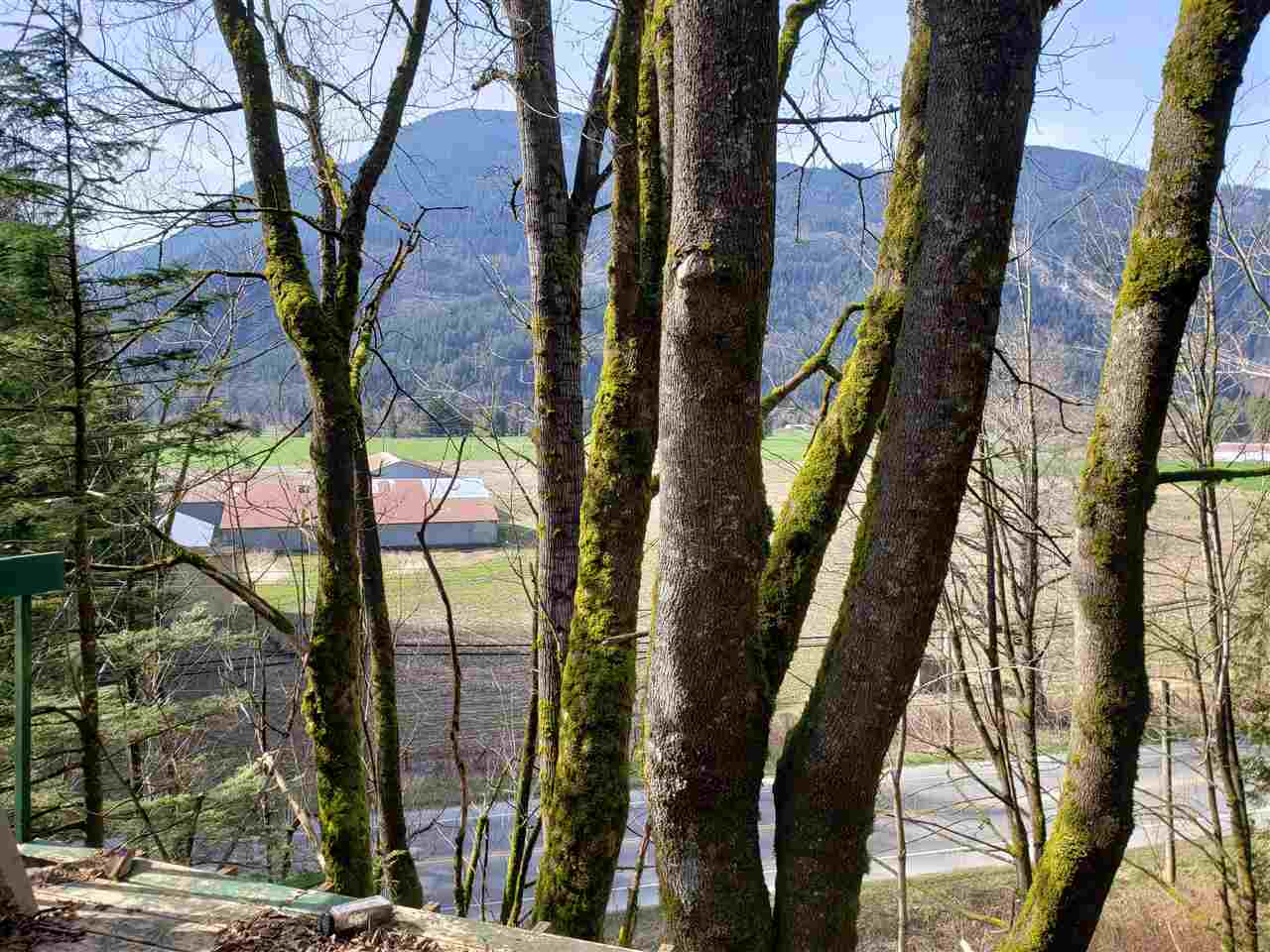 3266 HOT SPRINGS ROAD - Agassiz House with Acreage for sale, 4 Bedrooms (R2561857) - #5
