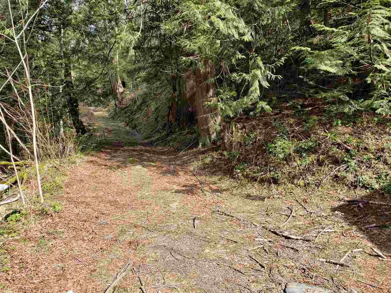3266 HOT SPRINGS ROAD - Agassiz House with Acreage for sale, 4 Bedrooms (R2561857) - #7