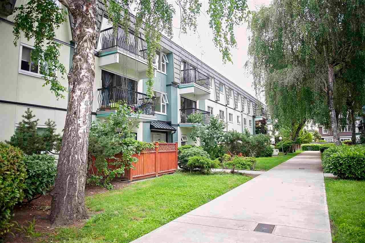 154 8131 RYAN STREET - South Arm Apartment/Condo for sale, 2 Bedrooms (R2562577)