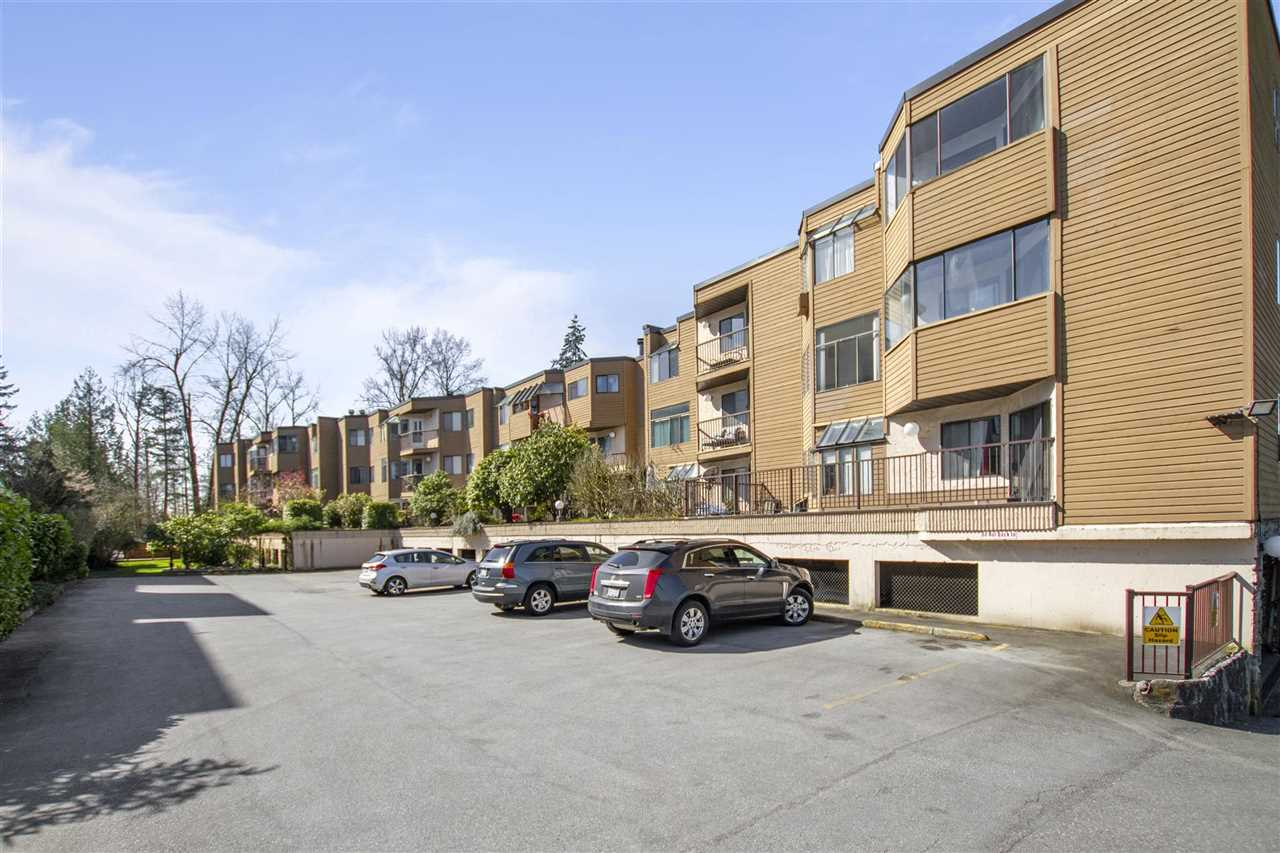 31 11900 228 STREET - East Central Apartment/Condo for sale, 2 Bedrooms (R2562684) - #19