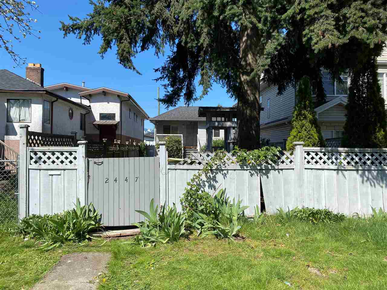 2447 E 41ST AVENUE - Collingwood VE House/Single Family for sale, 4 Bedrooms (R2568492) - #1