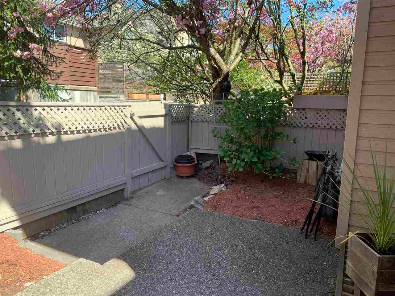 2 230 W 15TH STREET - Central Lonsdale Townhouse for sale, 3 Bedrooms (R2572749) - #2