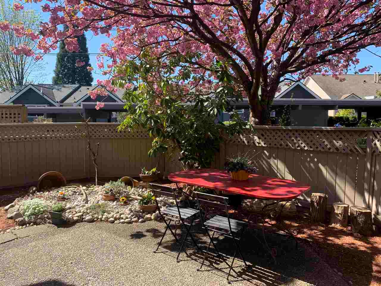 2 230 W 15TH STREET - Central Lonsdale Townhouse for sale, 3 Bedrooms (R2572749) - #4