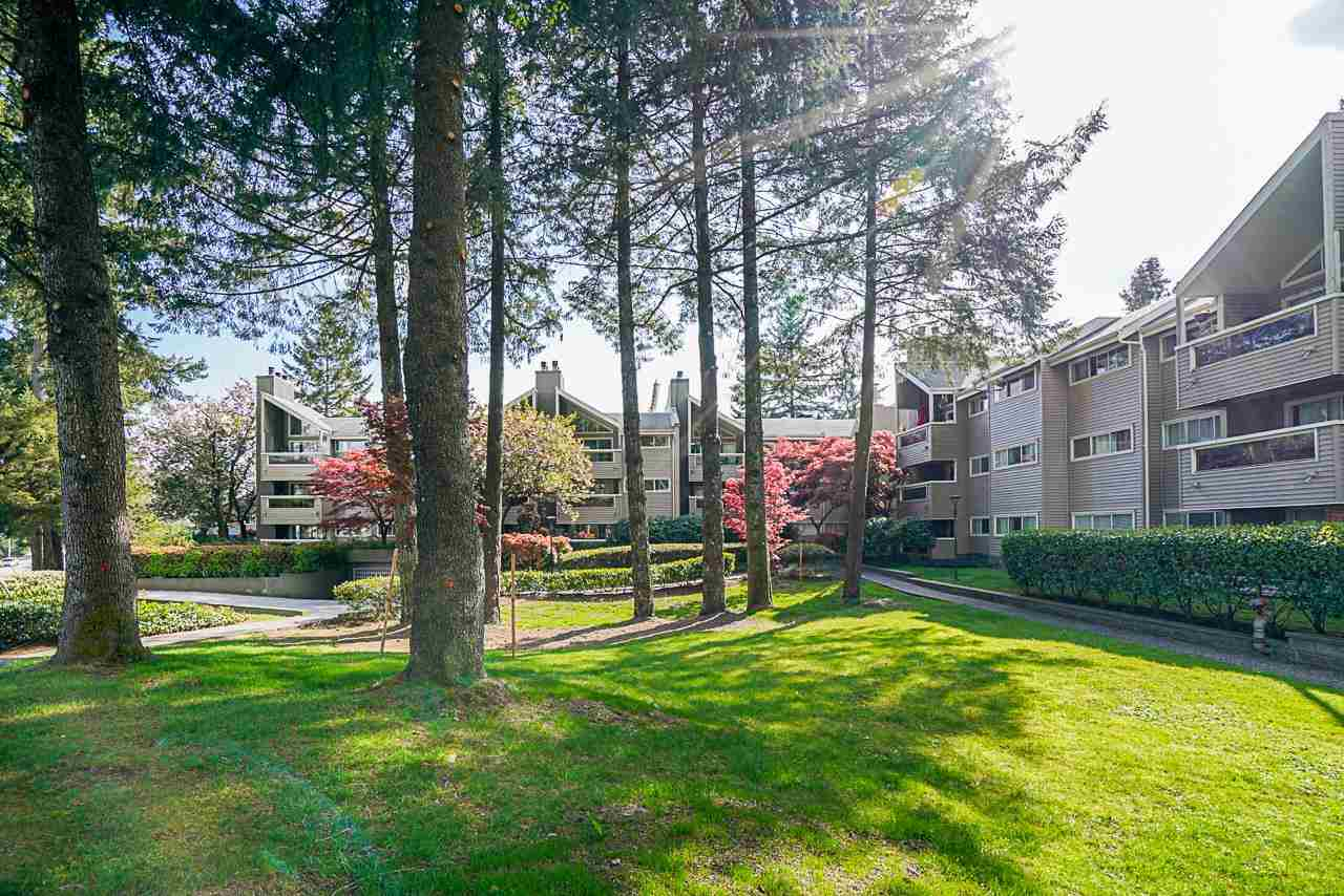 314 932 ROBINSON STREET - Coquitlam West Apartment/Condo for sale, 1 Bedroom (R2575721) - #24