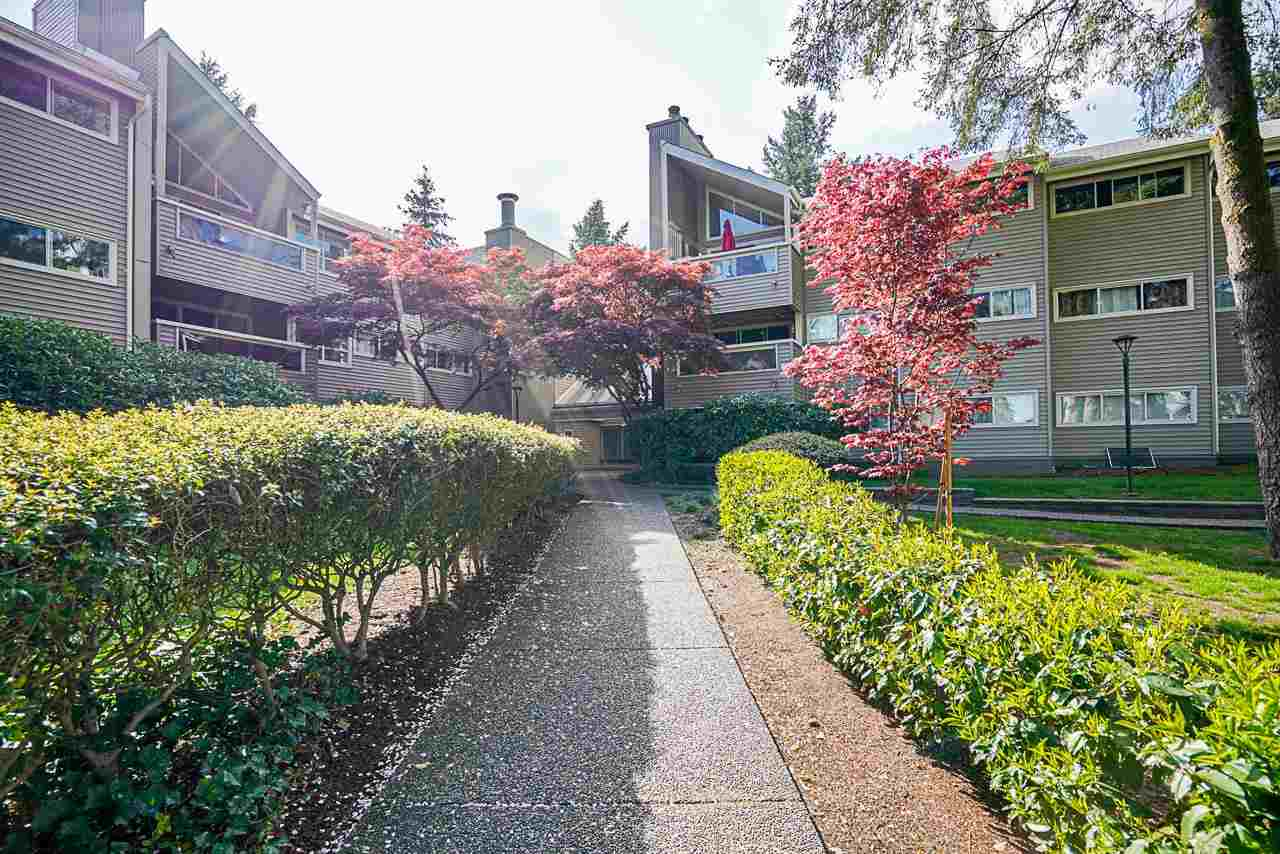 314 932 ROBINSON STREET - Coquitlam West Apartment/Condo for sale, 1 Bedroom (R2575721) - #27