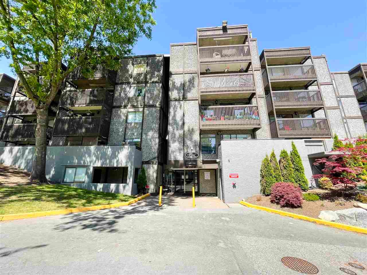 103 9682 134 STREET - Whalley Apartment/Condo for sale, 1 Bedroom (R2580797)