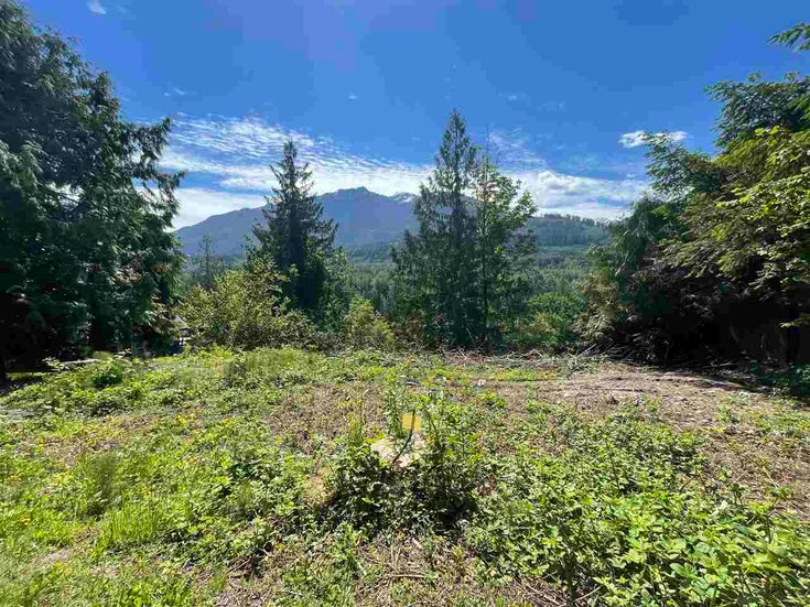 4160 SLESSE ROAD - Chilliwack River Valley for sale(R2586861)