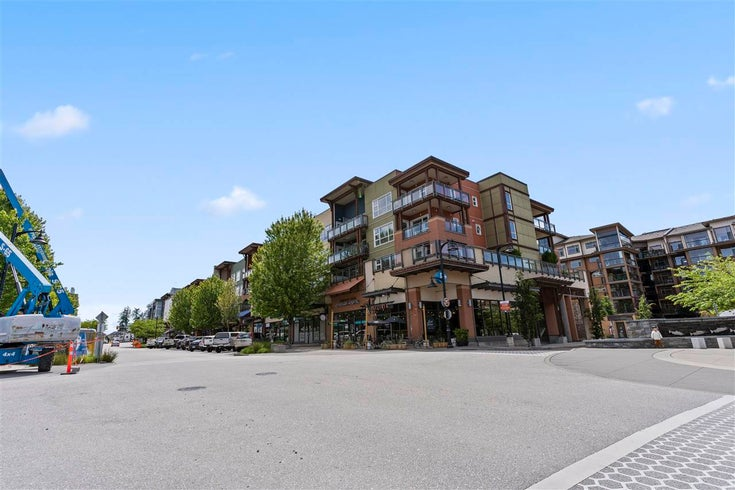 221 20728 WILLOUGHBY TOWN CENTRE DRIVE - Willoughby Heights Apartment/Condo for sale, 1 Bedroom (R2591037)
