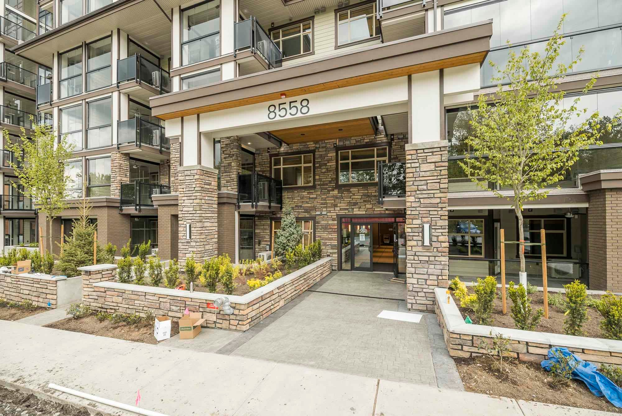 303 8561 203A STREET - Willoughby Heights Apartment/Condo for sale, 3 Bedrooms (R2594215) - #1