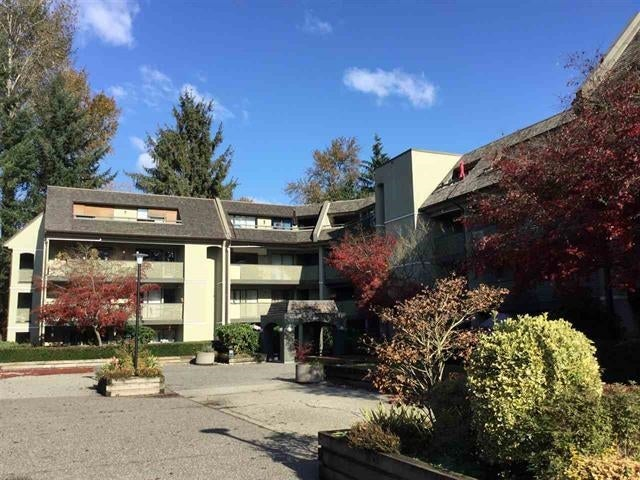 308 1210 PACIFIC STREET - North Coquitlam Apartment/Condo for sale, 1 Bedroom (R2603038)