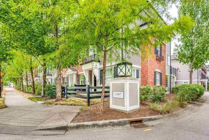 55 11067 BARNSTON VIEW ROAD - South Meadows Townhouse for sale, 3 Bedrooms (R2603358)